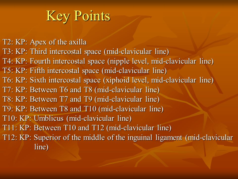 Key Points T2: KP: Apex of the axilla