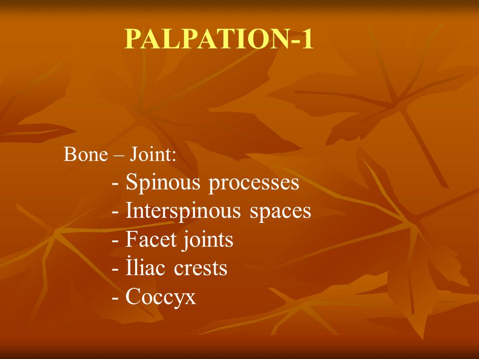 PALPATION-1 - Interspinous spaces - Facet joints - İliac crests