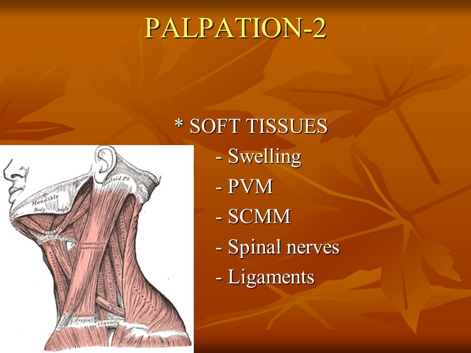 PALPATION-2 * SOFT TISSUES - Swelling - PVM - SCMM - Spinal nerves