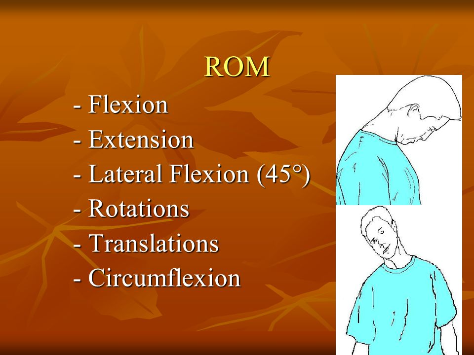 ROM - Flexion - Extension - Lateral Flexion (45°) - Rotations
