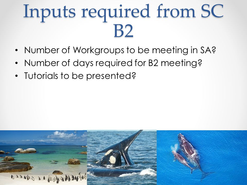 Inputs required from SC B2