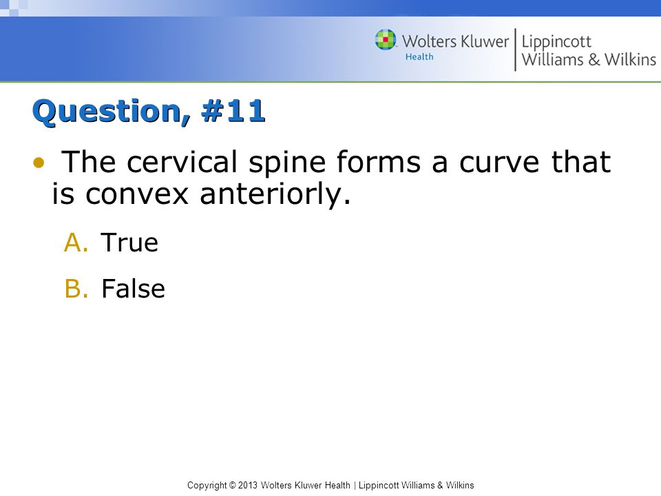 The cervical spine forms a curve that is convex anteriorly.
