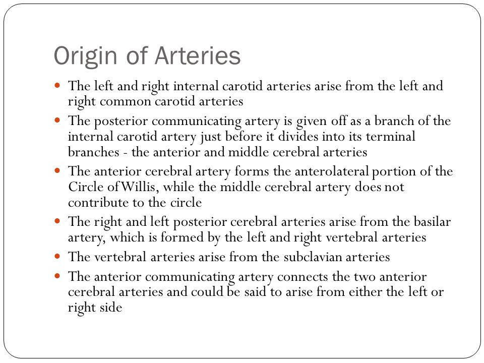 Origin of Arteries The left and right internal carotid arteries arise from the left and right common carotid arteries.