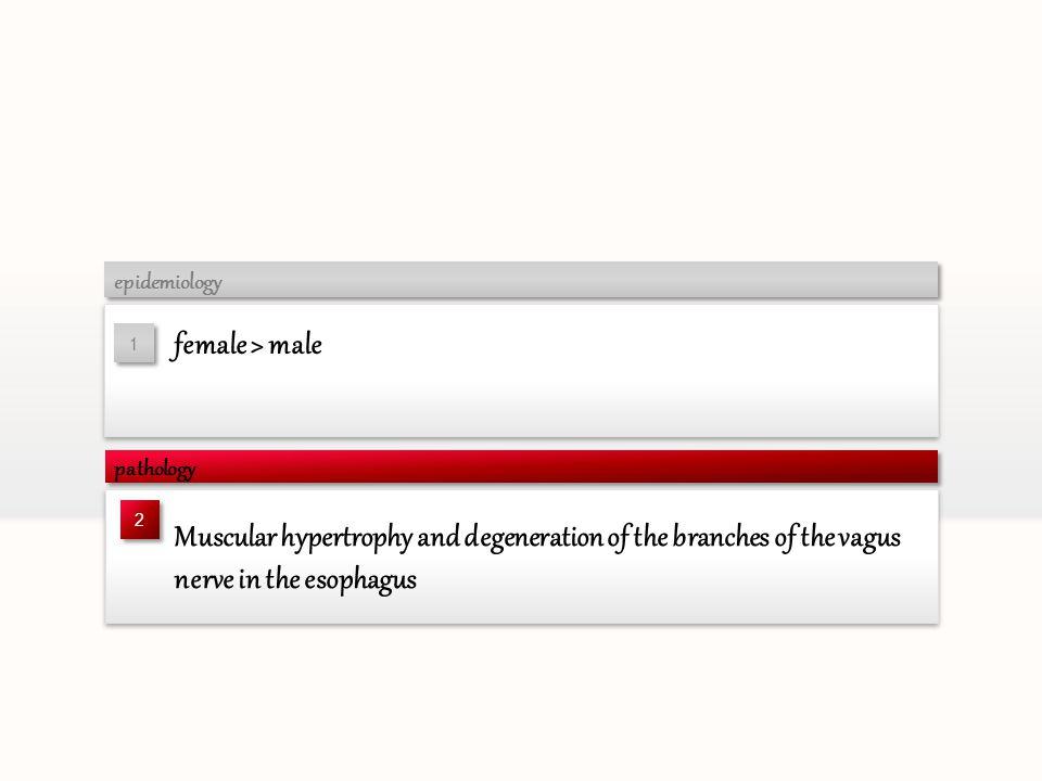 epidemiology female > male. 1. pathology. 2.