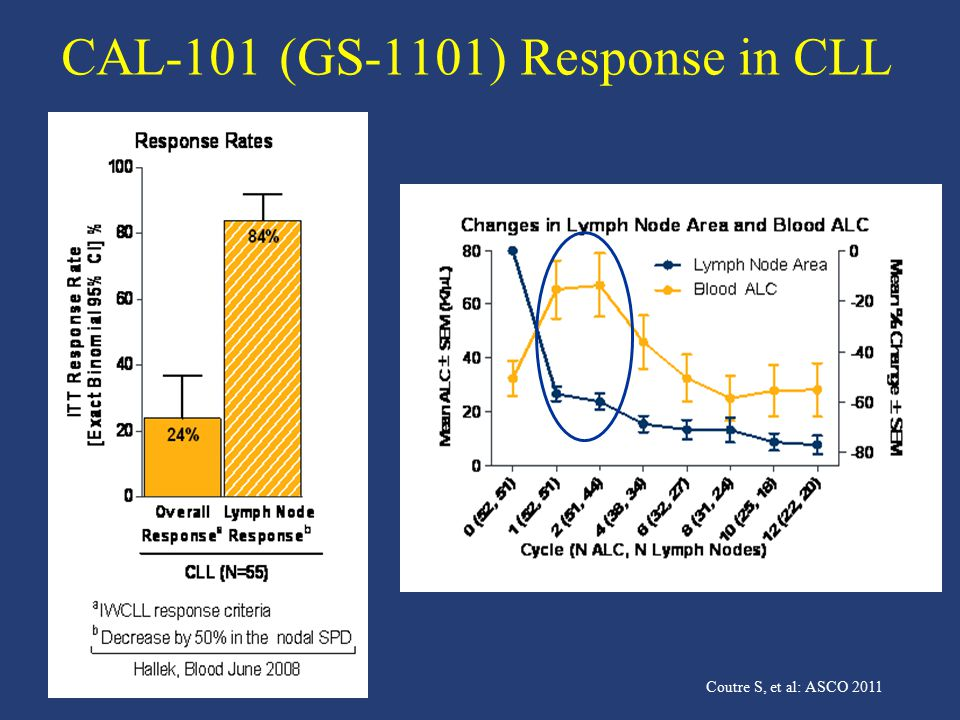 CAL-101 (GS-1101) Response in CLL