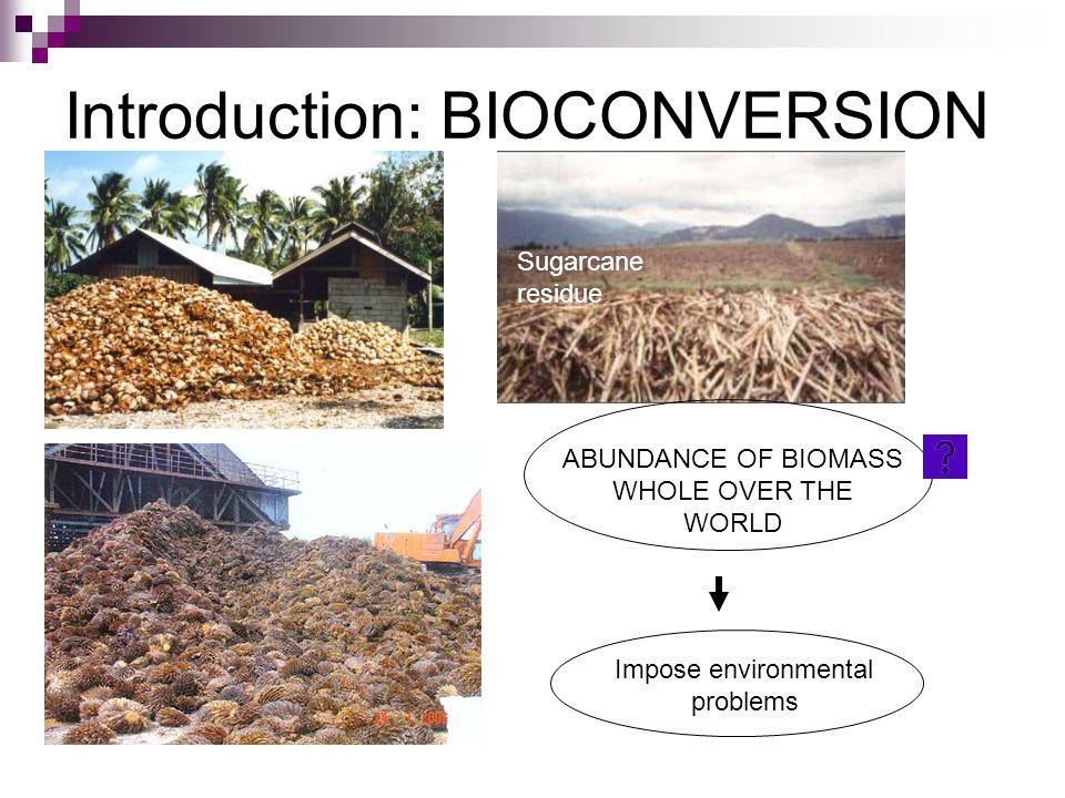 Introduction: BIOCONVERSION