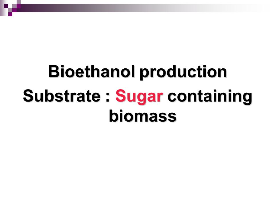 Bioethanol production Substrate : Sugar containing biomass
