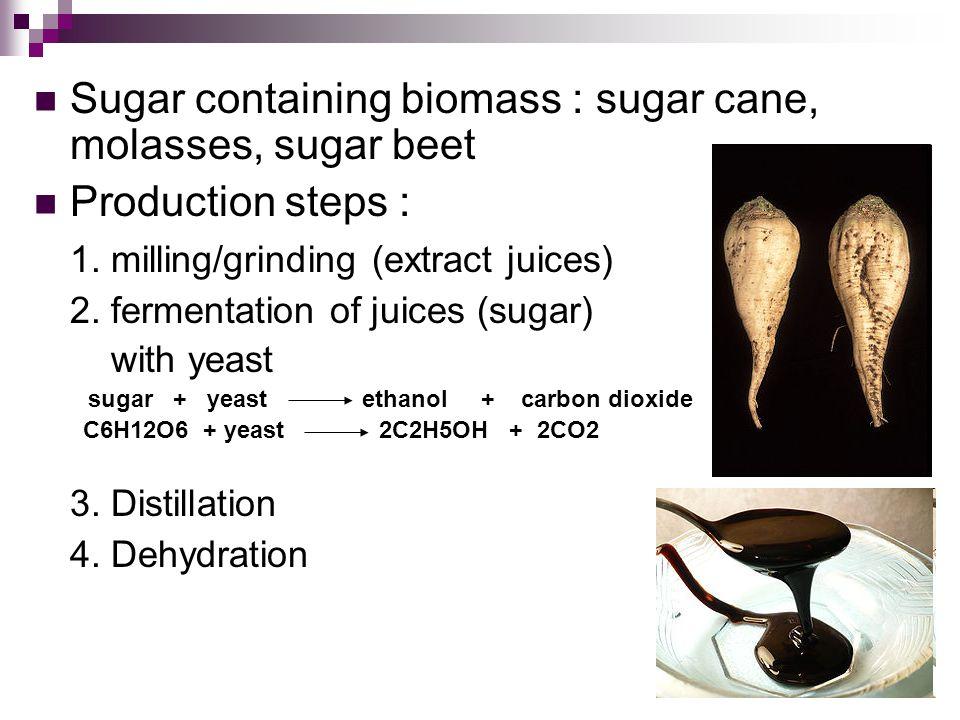 Sugar containing biomass : sugar cane, molasses, sugar beet