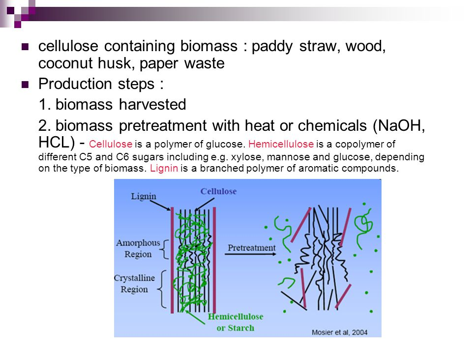 cellulose containing biomass : paddy straw, wood, coconut husk, paper waste