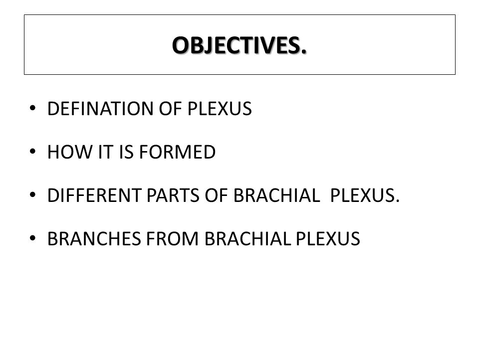 OBJECTIVES. DEFINATION OF PLEXUS HOW IT IS FORMED