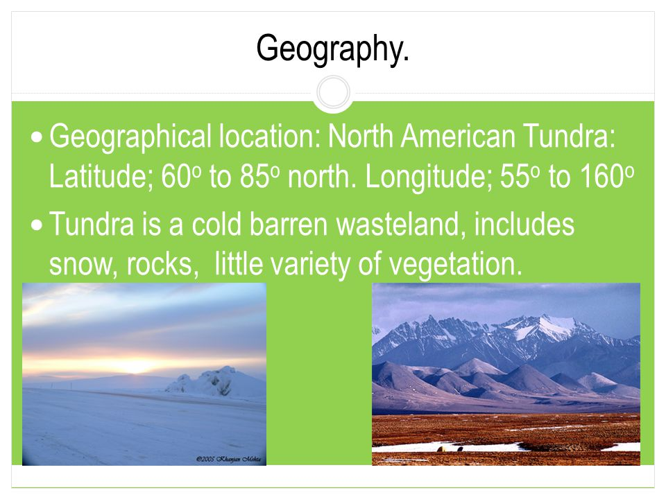 Geography. Geographical location: North American Tundra: Latitude; 60o to 85o north. Longitude; 55o to 160o.