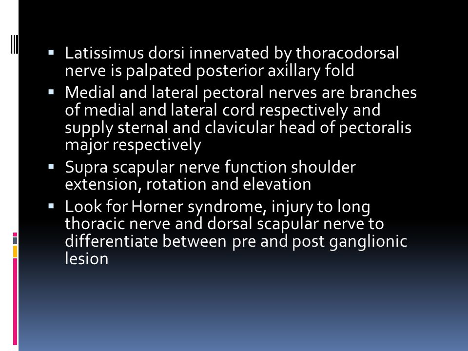 Latissimus dorsi innervated by thoracodorsal nerve is palpated posterior axillary fold