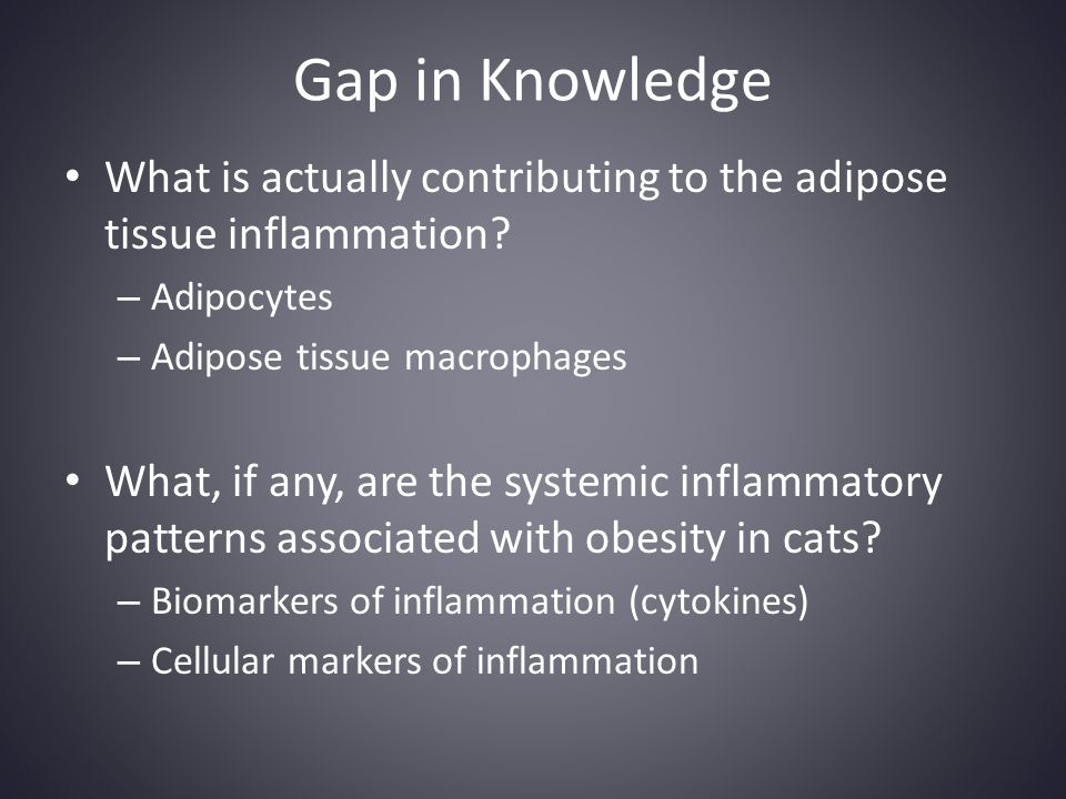 Gap in Knowledge What is actually contributing to the adipose tissue inflammation Adipocytes. Adipose tissue macrophages.