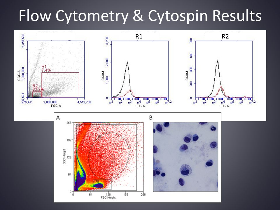 Flow Cytometry & Cytospin Results