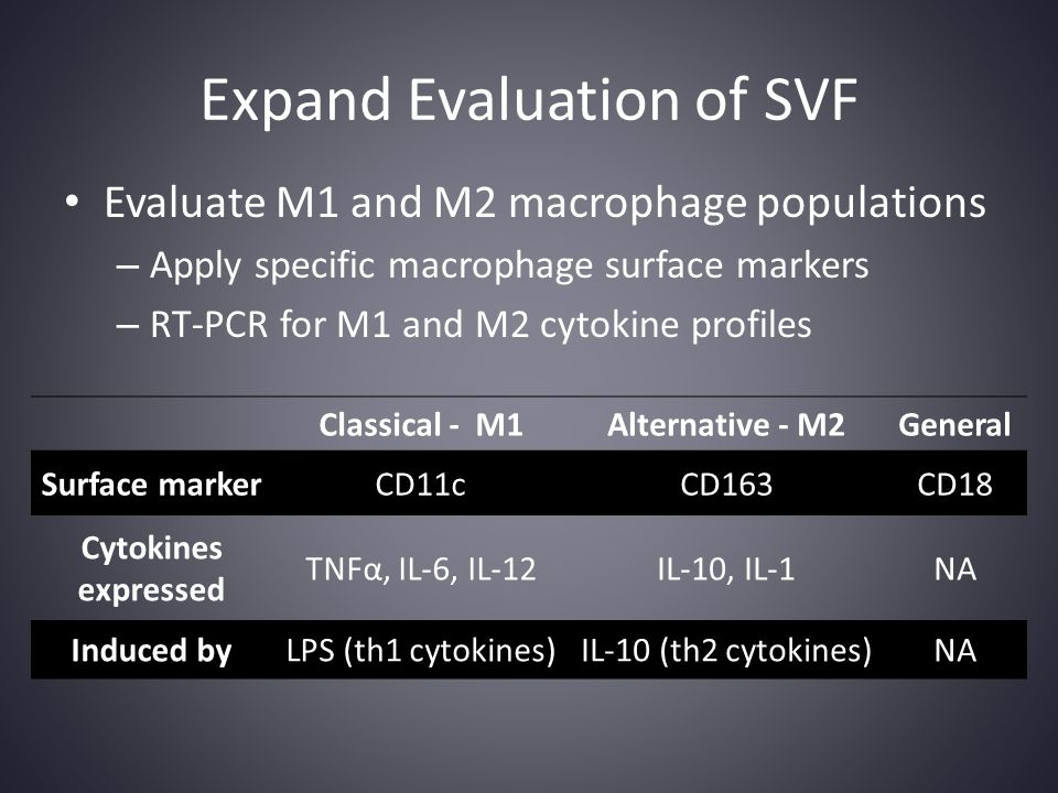Expand Evaluation of SVF