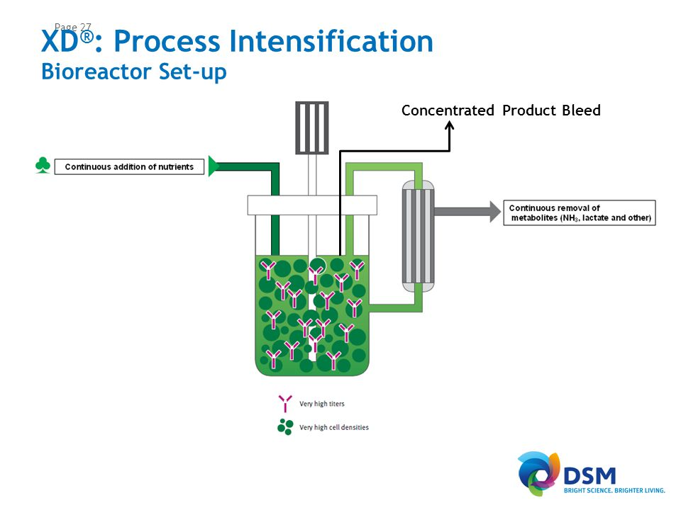 XD®: Process Intensification Scaled-up in different 50 L Single Use Bioreactors