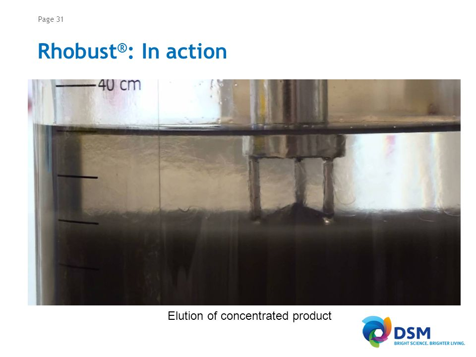 RHOBUST® GMP column (30 cm diameter) and MabDirect ProteinA adsorbent