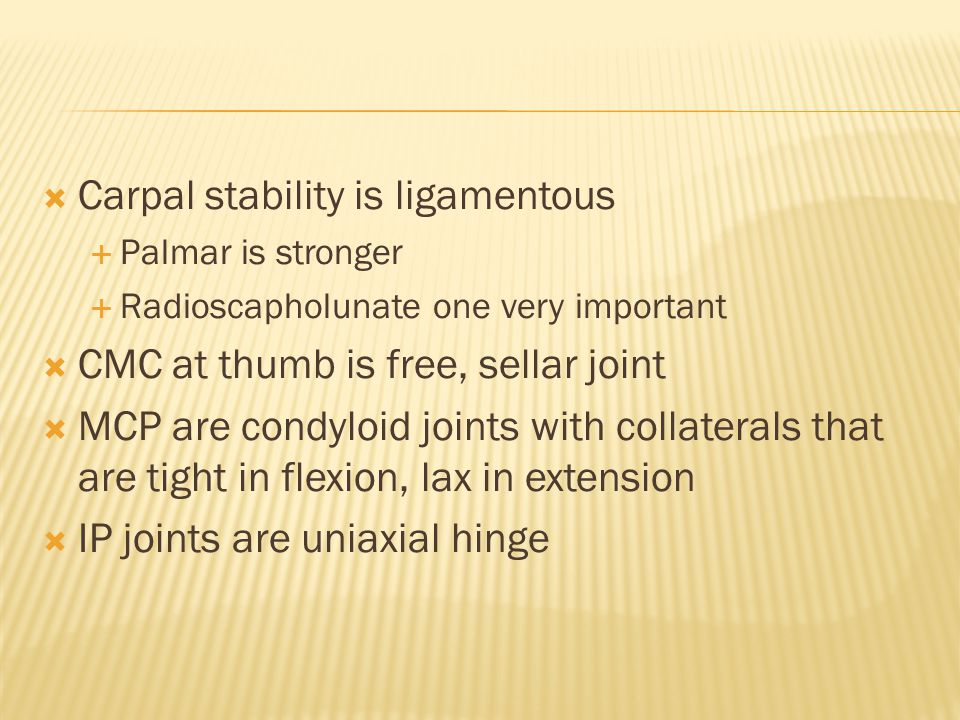 Carpal stability is ligamentous