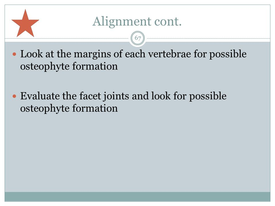 Alignment cont. Look at the margins of each vertebrae for possible osteophyte formation.