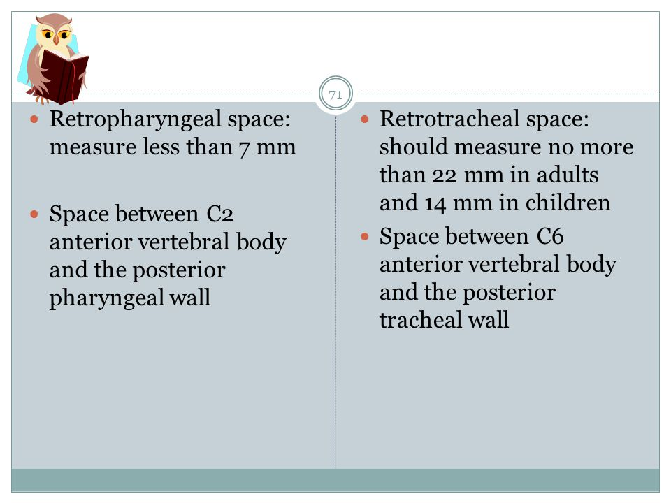 Retropharyngeal space: measure less than 7 mm