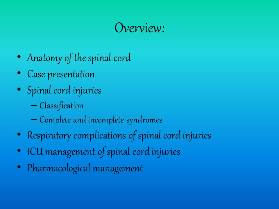 Overview: Anatomy of the spinal cord Case presentation