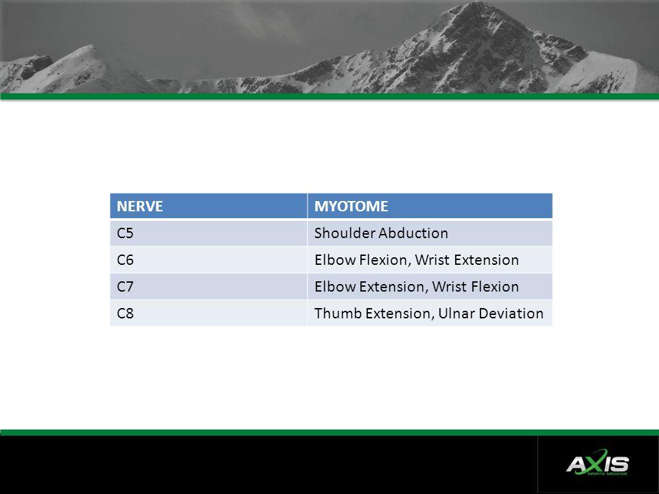 NERVE MYOTOME. C5. Shoulder Abduction. C6. Elbow Flexion, Wrist Extension. C7. Elbow Extension, Wrist Flexion.