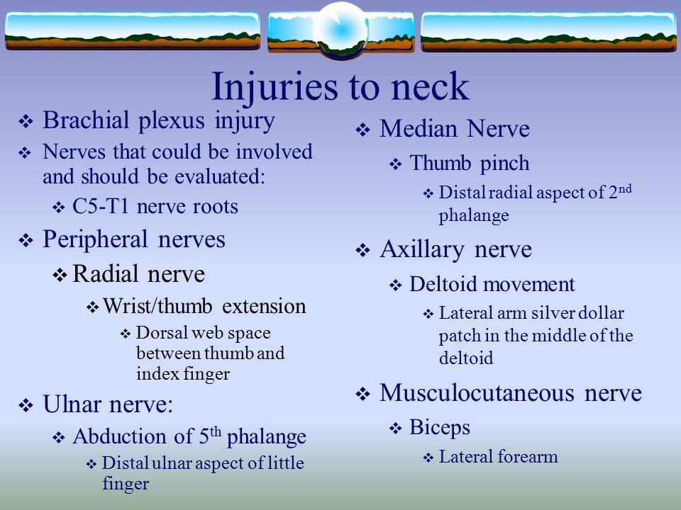 Injuries to neck Brachial plexus injury Median Nerve Peripheral nerves