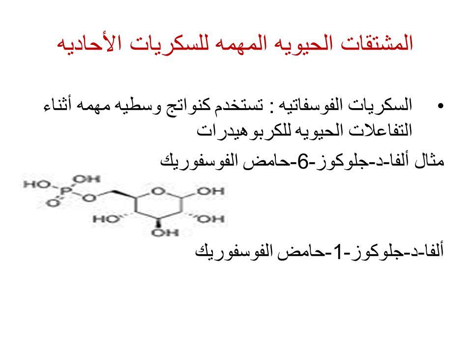 المشتقات الحيويه المهمه للسكريات الأحاديه