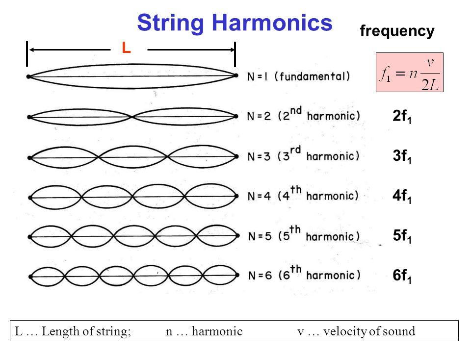 String Harmonics frequency L 2f1 3f1 4f1 5f1 6f1
