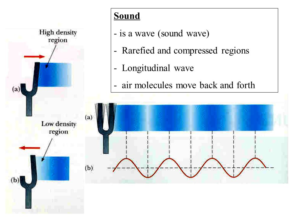 Sound - is a wave (sound wave) - Rarefied and compressed regions.