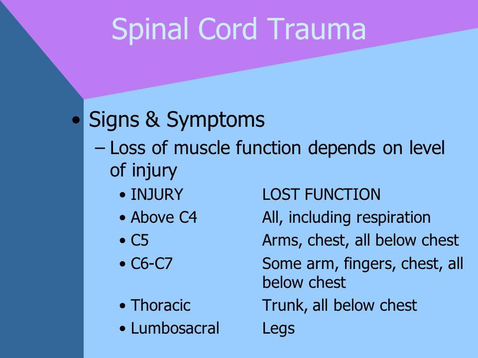Spinal Cord Trauma Signs & Symptoms