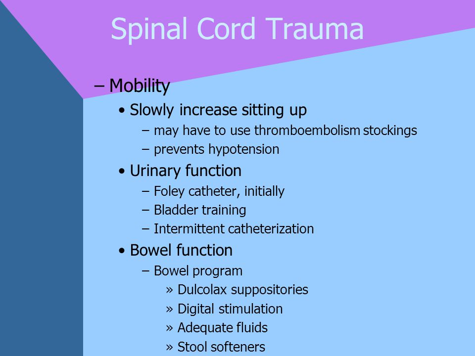 Spinal Cord Trauma Mobility Slowly increase sitting up