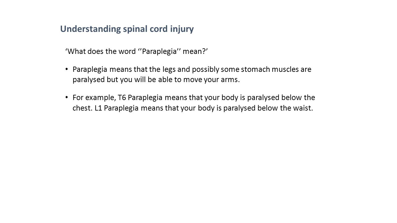 Understanding spinal cord injury