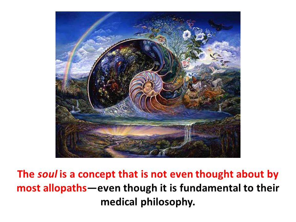 The soul is a concept that is not even thought about by most allopaths—even though it is fundamental to their medical philosophy.