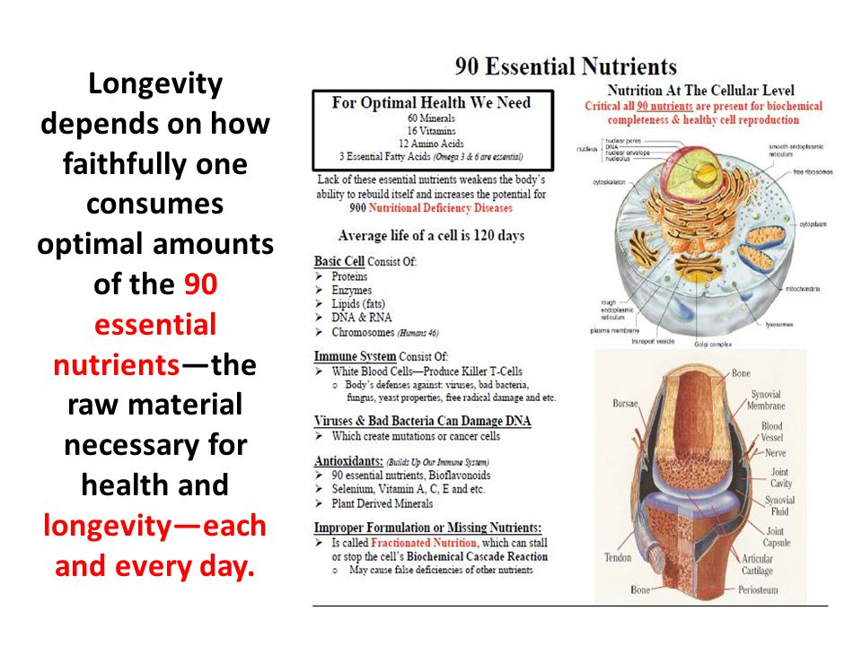 Longevity depends on how faithfully one consumes optimal amounts of the 90 essential nutrients—the raw material necessary for health and longevity—each and every day.