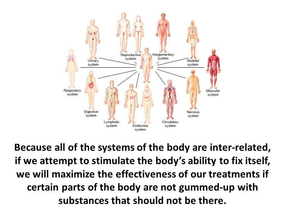 Because all of the systems of the body are inter-related, if we attempt to stimulate the body's ability to fix itself, we will maximize the effectiveness of our treatments if certain parts of the body are not gummed-up with substances that should not be there.