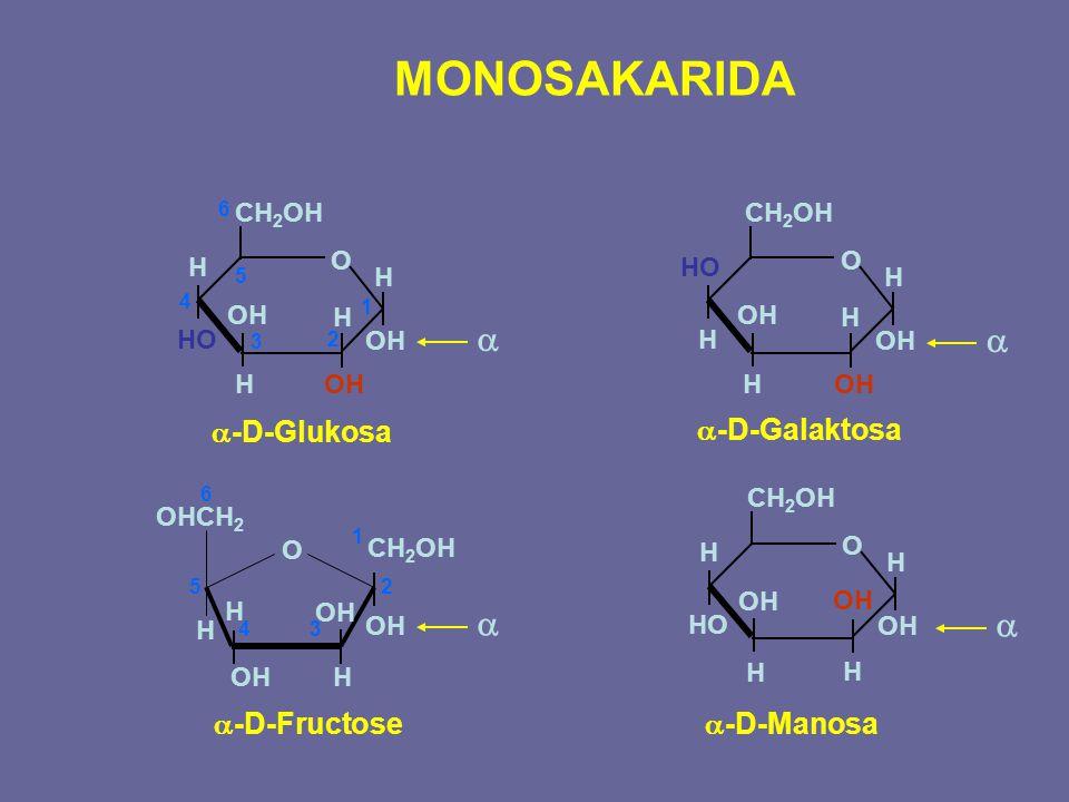 MONOSAKARIDA a a a a a-D-Glukosa a-D-Galaktosa a-D-Fructose a-D-Manosa