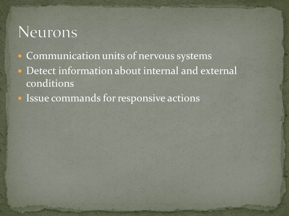 Neurons Communication units of nervous systems