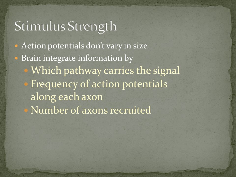Stimulus Strength Which pathway carries the signal