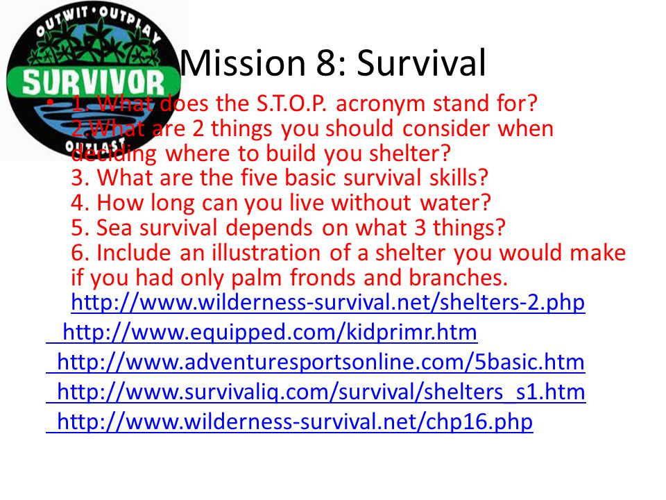 Mission 8: Survival