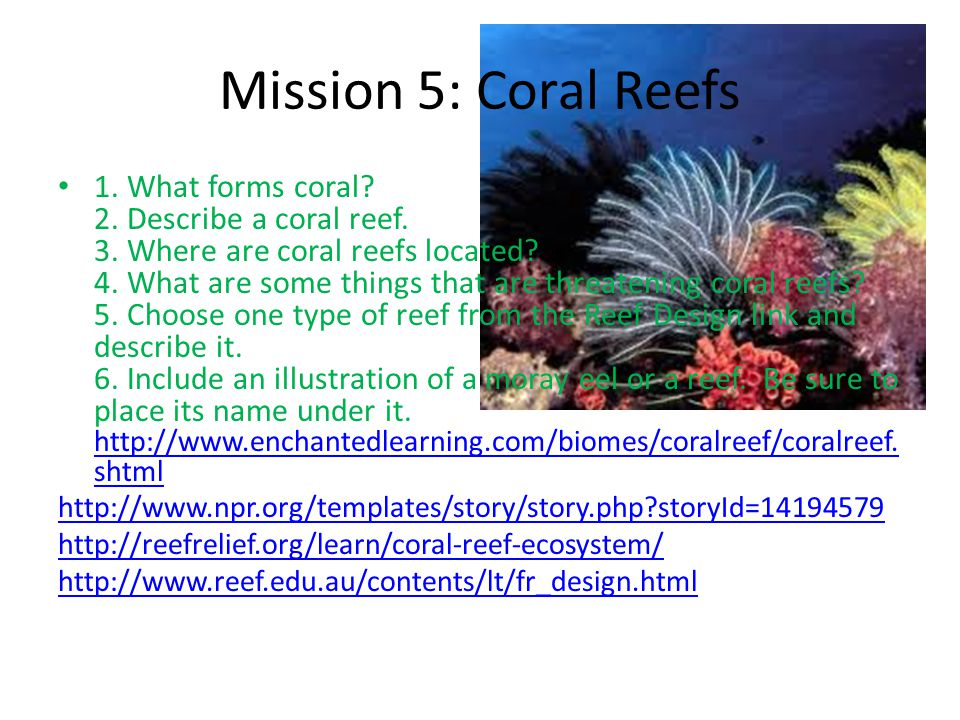 Mission 5: Coral Reefs