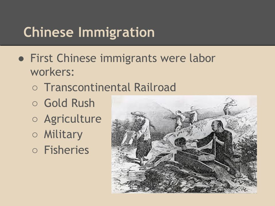 Chinese Immigration First Chinese immigrants were labor workers: