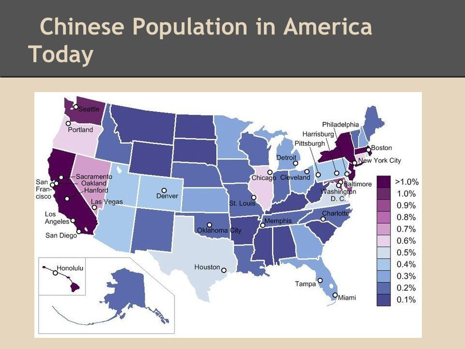 Chinese Population in America Today