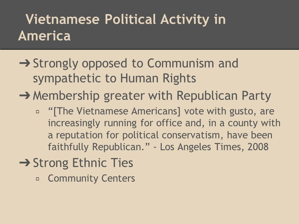 Vietnamese Political Activity in America