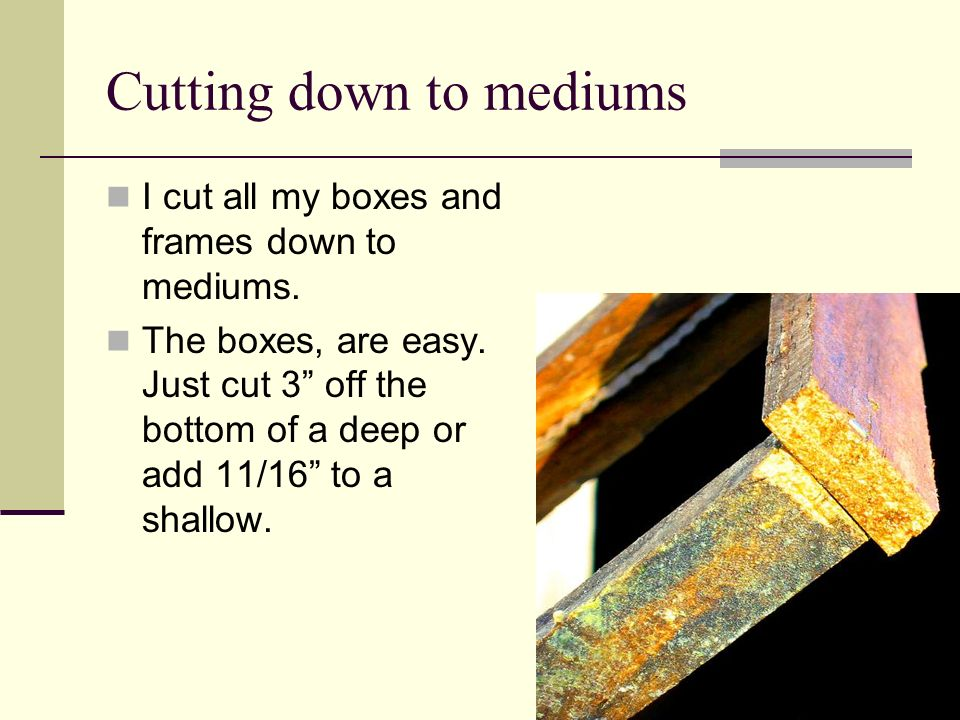 Cutting down to mediums