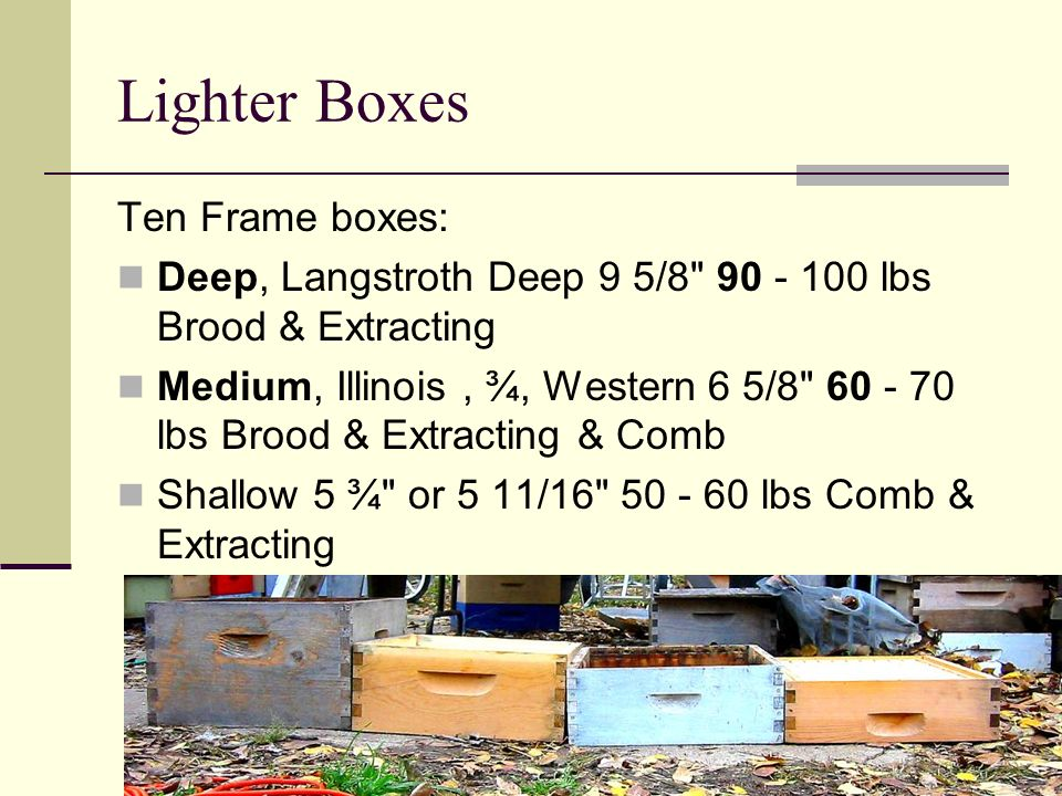 Lighter Boxes Ten Frame boxes:
