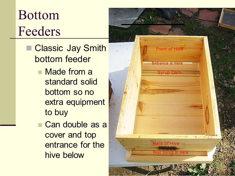 Bottom Feeders Classic Jay Smith bottom feeder
