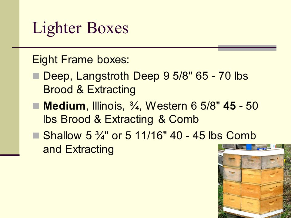 Lighter Boxes Eight Frame boxes: