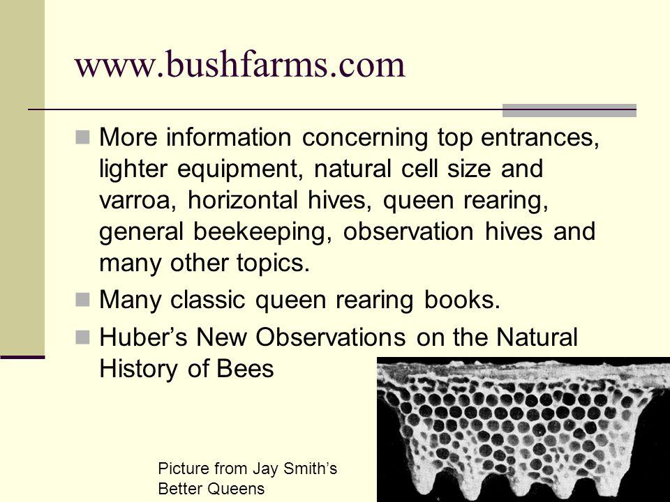 www.bushfarms.com