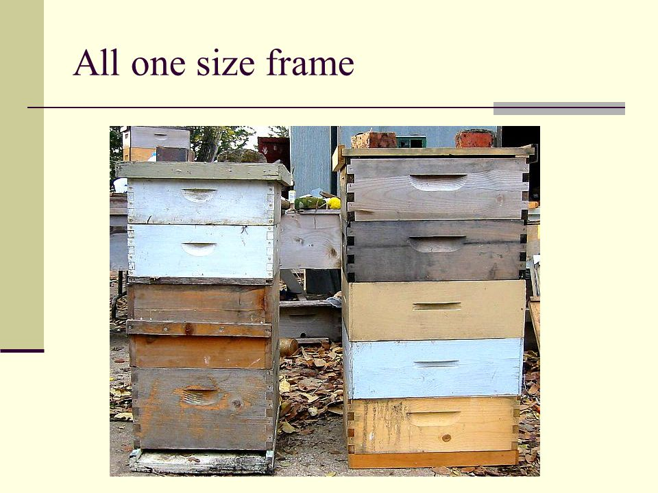 All one size frame